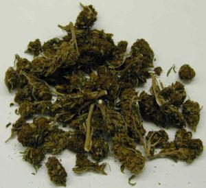 mantequilla de cannabis
