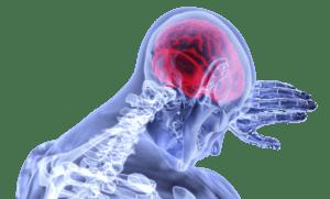 Beneficios del CBD en el cerebro