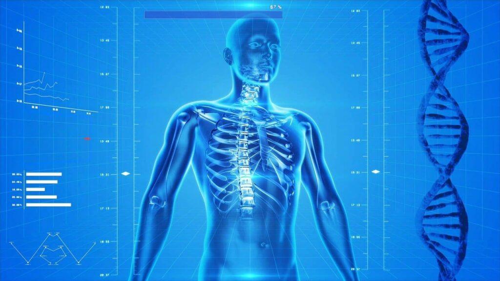 Beneficios del CBD en el cuerpo